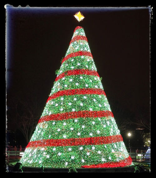 All Is Bright: Thomas Edison and the Story Behind the Electric Christmas Tree 0