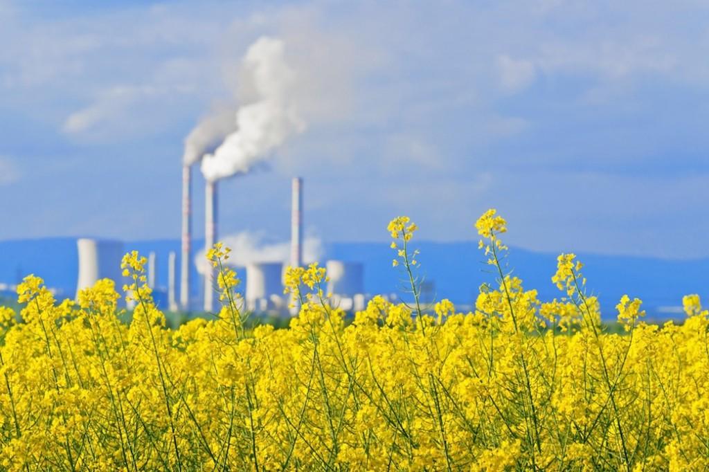 David Sandalow: Is the Paris Climate Conference Already a Success? 0